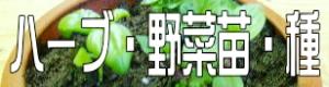 ハーブ・野菜苗・種