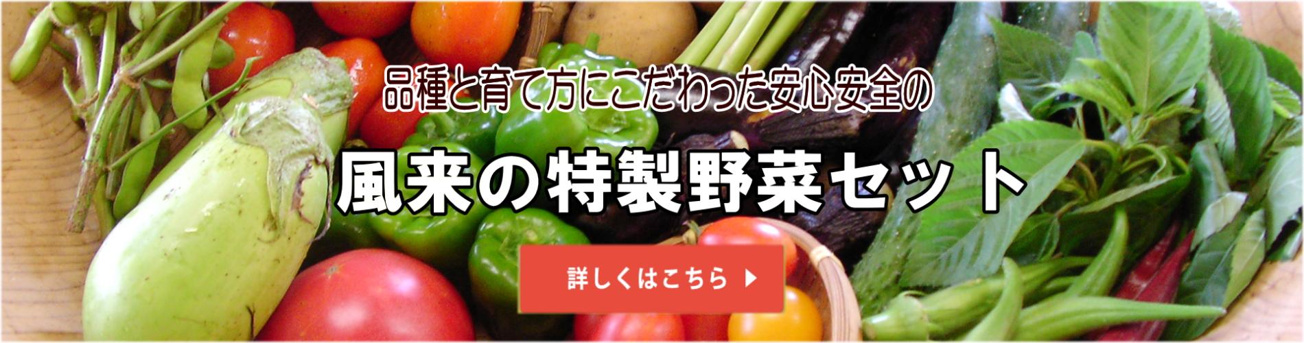 無農薬ハーブ苗・野菜苗